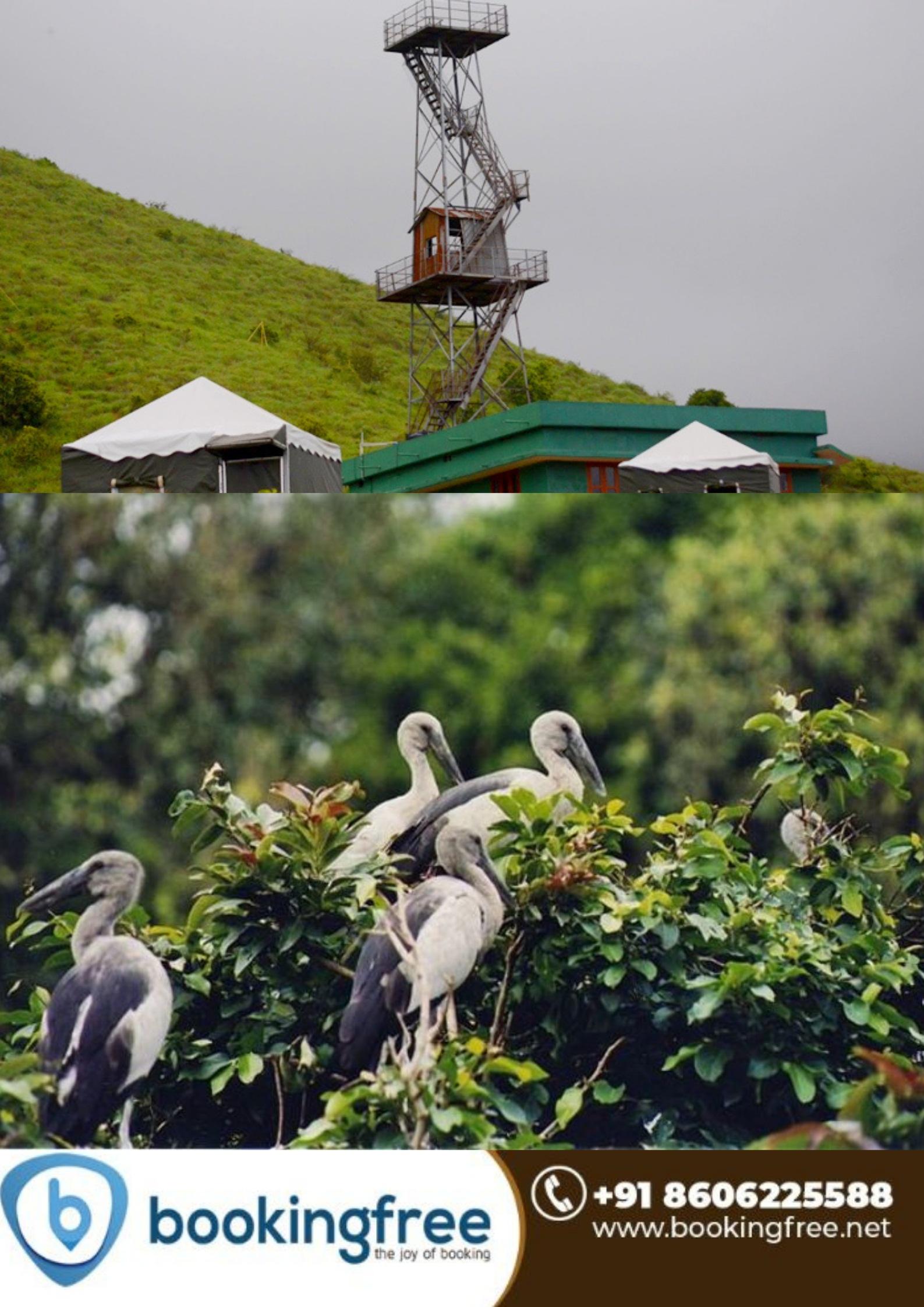 Pakshipathalam Bird Sanctuary  Wayanad
